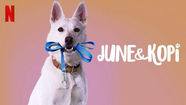 June ve Kopi Filmi Hakkında