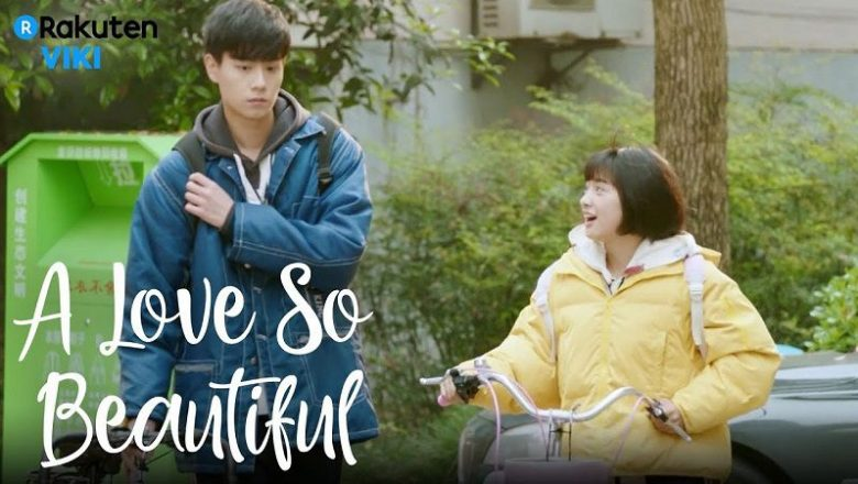 A Love So Beautiful Dizisi (2020)